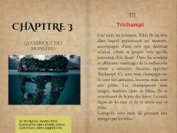 pages_des_livres_dquipes_1